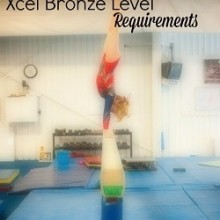 Xcel Bronze Requirements