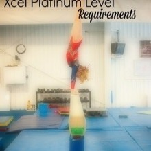 Xcel Platinum Requirements
