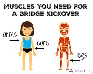 muscles you need for a bridge kickover