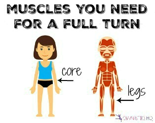 muscles you need for a full turn