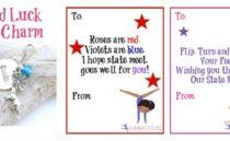 Gymnastics Good Luck Gifts