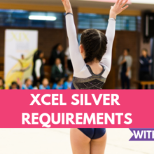 Xcel Silver Requirements